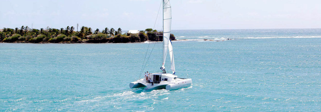 Neel Trimaran bei cat sale