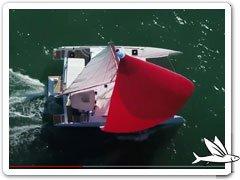 Video NEEL 43